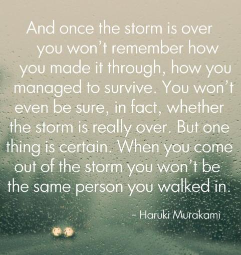 Haruki Murakami quote storm.PNG