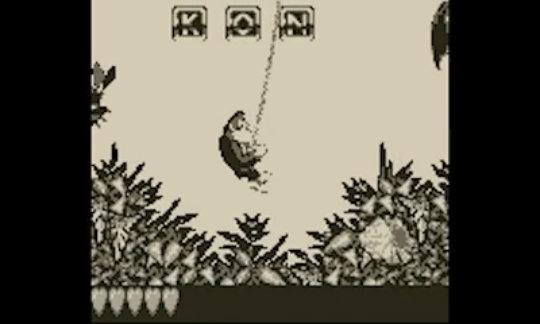 Donkey Kong Land 2.jpg