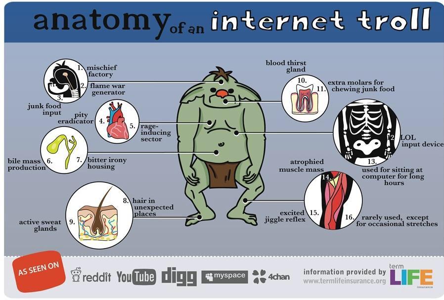 Afbeeldingsresultaat voor internet troll win
