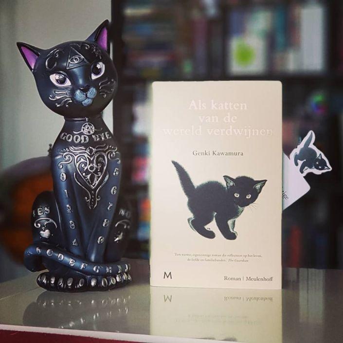 Als katten van de wereld verdwijnen 2.jpg