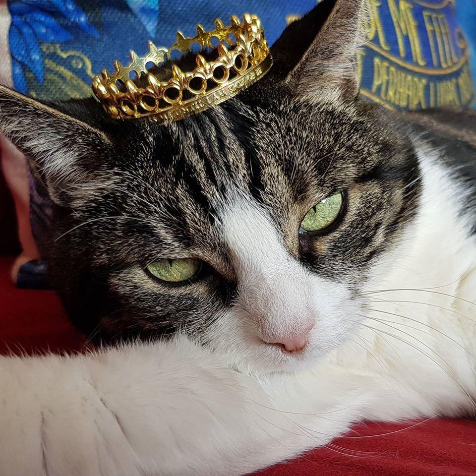 Bobbie the Queen