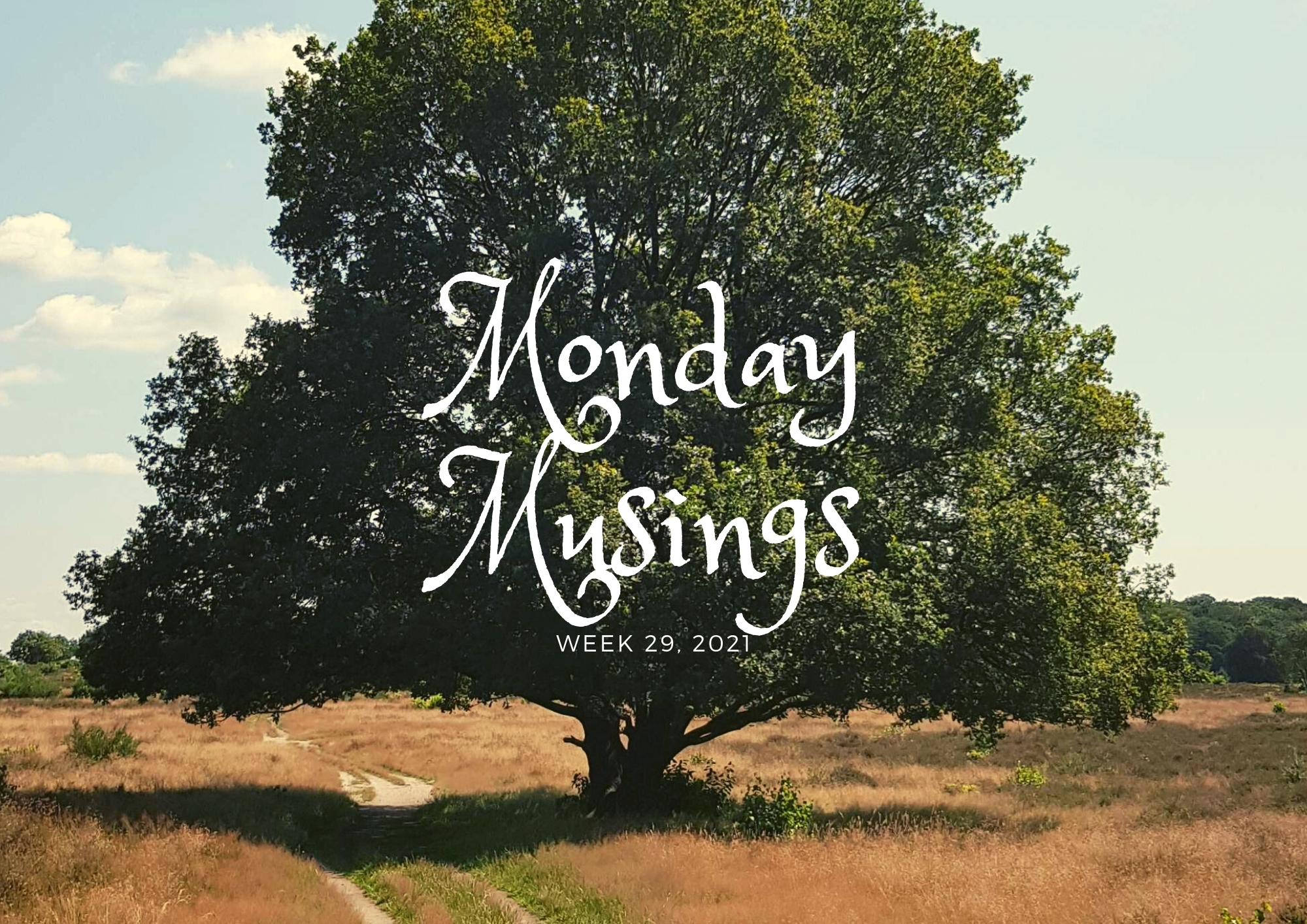 Monday Musings (29)